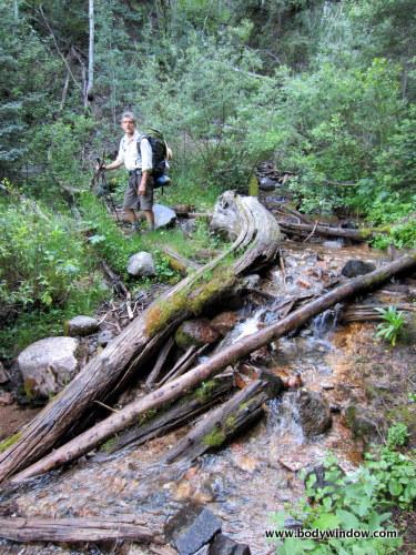 North Pigeon Creek Crossing on the Ruby Creek Trail