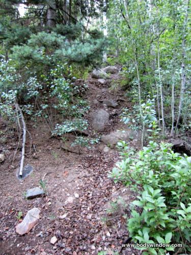 Steep Trail from N. Pigeon Creek on the Ruby Creek Trail