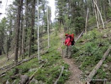 The Strong Ruby Creek Trail