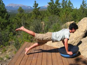 Bosu Ball, wobble side, plank position with a leg raised.