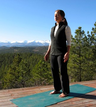 understanding your body  what your postures  movements