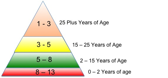 Brad Pilon's Food Pyramid