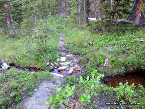 Tributary of North Halfmoon Creek