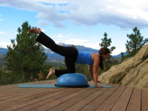 Bosu balance trainer, kneeling with hands on floor, raise one leg.