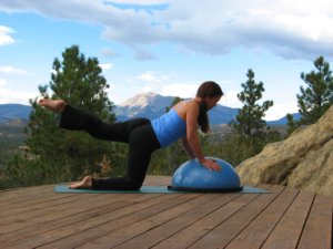 Bosu ball, modified plank position on knees, raise left leg.