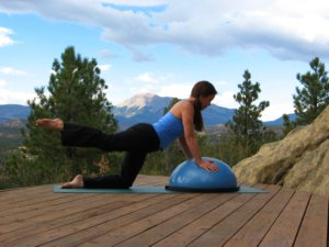 Bosu ball, modified plank position on knees, raise right leg..