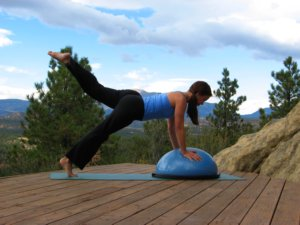 Bosu Ball, plank position, raise left leg.