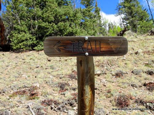 Trail Sign on WIlliams Creek Trail
