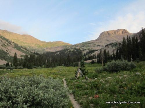 Point 12510 along the Johnson Creek Trail in southwestern Colorado