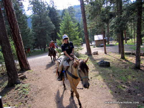 Horse Ride at the Vallecito Creek Trailhead