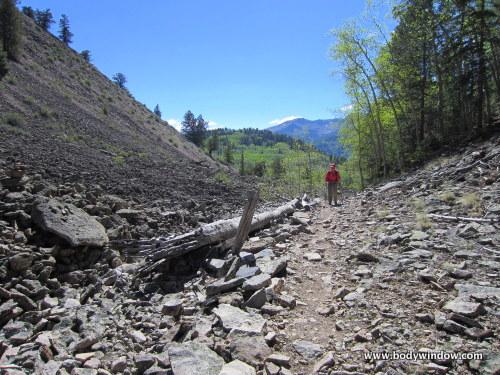 High Moraine along the Williams Creek Trail near Lake City, CO
