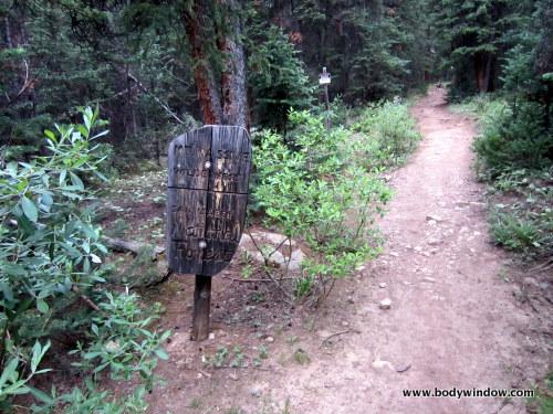 Mount Massive Wilderness Signpost