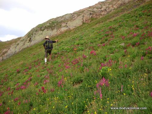 Grassy Slopes of South Ridge of Jupiter Mountain, San Juan Mountains, Colorado