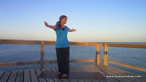 Yoga Standing Twist, Left