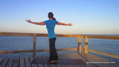 Yoga Standing Twist, Right