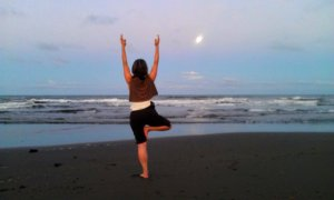 Tree Pose at Moonrise, beach near Cahuita, Costa Rica