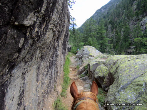 Passageway on the Vallecito Creek Trail