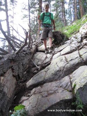 Vestal Creek Trail