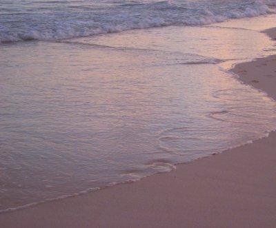 Sunlight at water's edge
