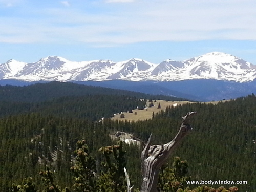 Close up of the Sangre de Cristo Mountains to the West from the West Peak Trail at Treeline.
