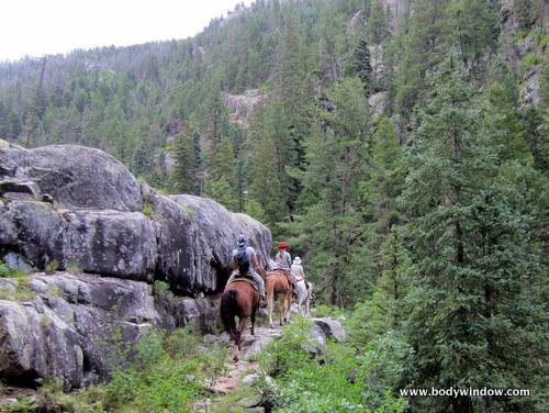 Vallecito Creek Trail Ledges